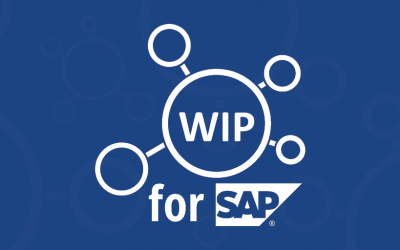 WIP 4 SAPBI Has Been Launched!